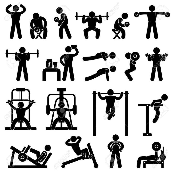 Muscu un coaching personnalis d tente et loisirs macau - Musculation dessin ...
